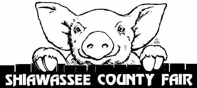 2016 Shiawassee County Fair image