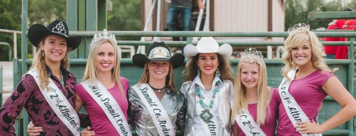 2016 Summit County Fair image